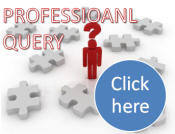 Professional Inquiry/Query